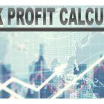 Stock Profit Calculator
