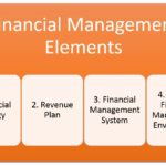 Financial Management Basics