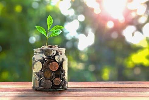 Start a 401k plan